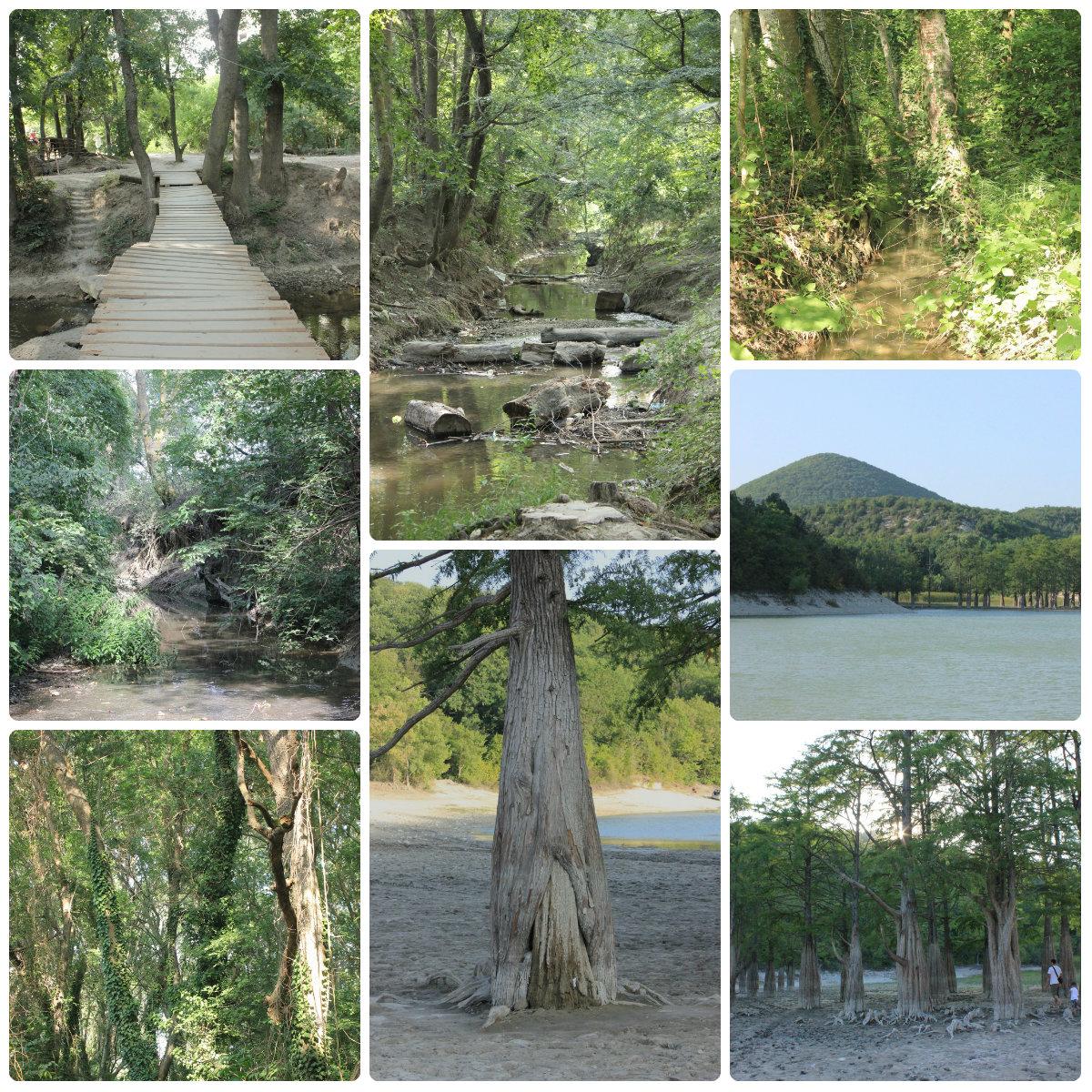 озеро-речка-collage